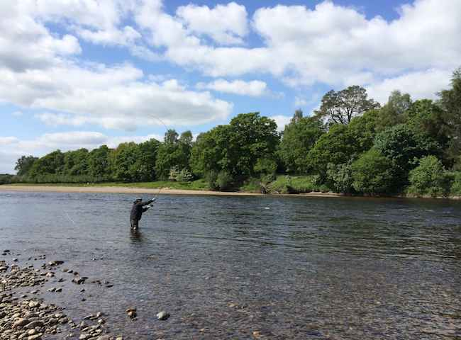 Fly Fishing Holidays In Scotland